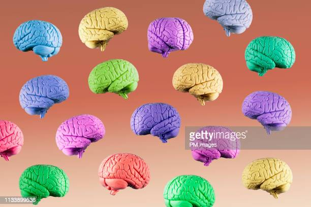 multi colored floating brains - intelligence stock pictures, royalty-free photos & images