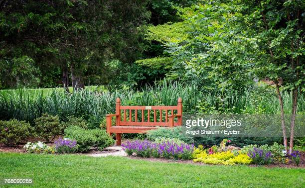 multi colored flowers in park - flowerbed stock pictures, royalty-free photos & images