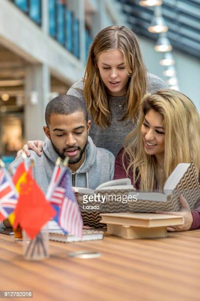 Multi ethnic university adult students learning languages together in a study hall