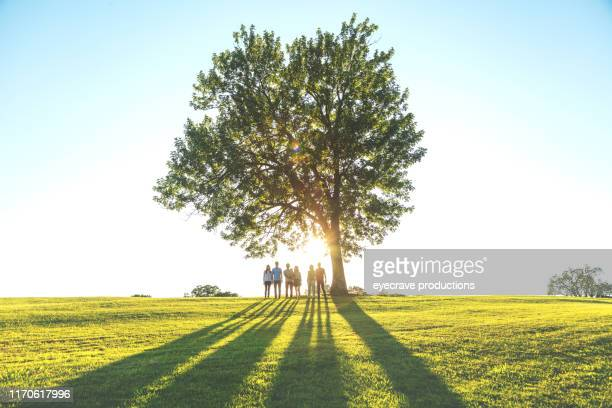 Multi generation Family photos taken in public park lush green grass and treed area in springfield Missouri during golden hour
