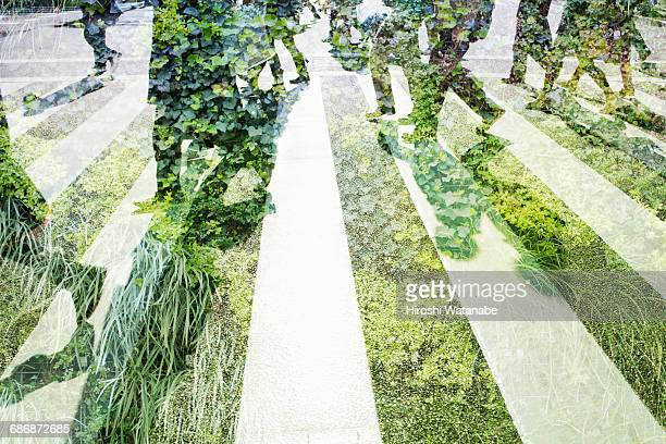 multi layered businessmen with green wall - 問題 ストックフォトと画像