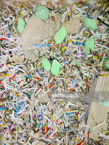 multicolor shredded confetti paper - briel stock pictures, royalty-free photos & images