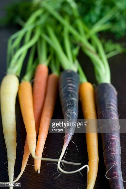 Multicolore de carottes