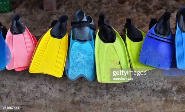 Multi-colored diving flippers in a row
