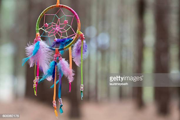 Multi-colored Dreamcatcher hanging in the woods