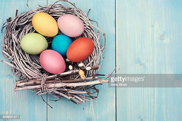 Multicolored Easter eggs in a nest on a blue wooden table. Debica, Poland