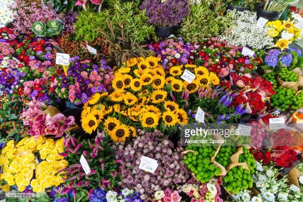 multicolored flowers at flower shop display in paris, france - prezzo messaggio foto e immagini stock