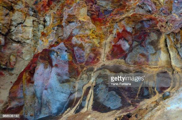 multicoloured i - petrified wood stock pictures, royalty-free photos & images