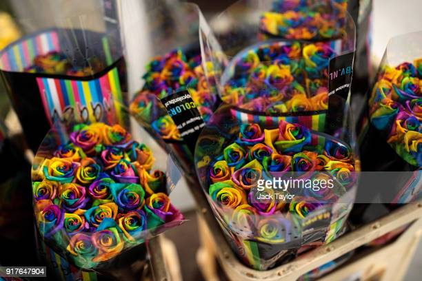 Multicoloured roses sits in bunches at New Covent Garden Flower Market ahead of Valentine's Day on February 13 2018 in London England New Covent...
