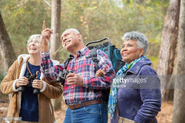 Multi-ethnic, active senior adult friends hiking in wooded forest area.