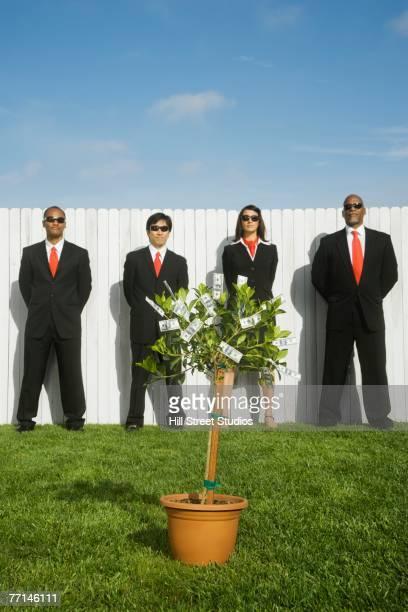 multi-ethnic businesspeople behind money tree - agente del servicio secreto fotografías e imágenes de stock