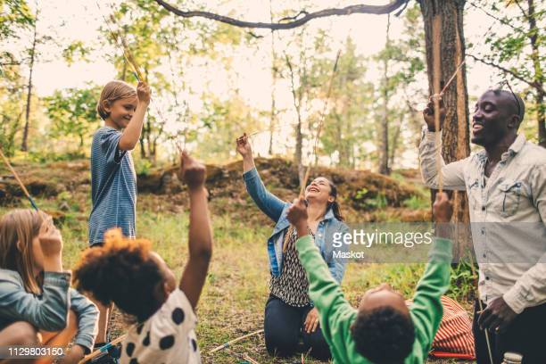 multi-ethnic family holding skewers at picnic spot in park - social services stock pictures, royalty-free photos & images