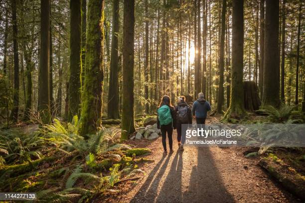 multi-ethnic family walking along sunlit forest trail, father and daughters - canada stock pictures, royalty-free photos & images