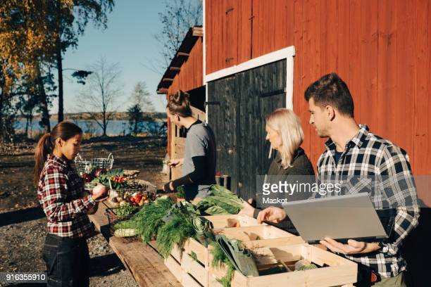 Multi-ethnic farmers arranging organic vegetables on table outside barn