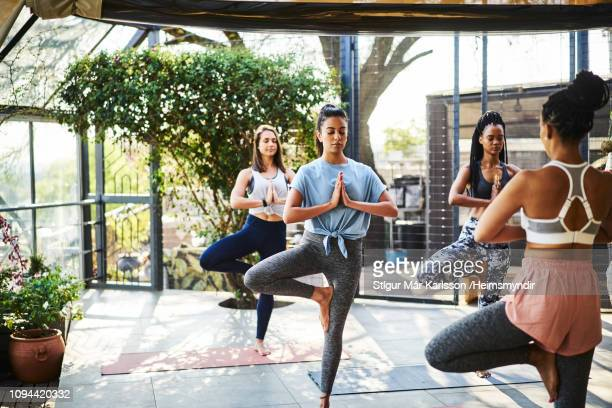 multi-ethnic females practicing tree pose on mat - yoga teacher stock pictures, royalty-free photos & images
