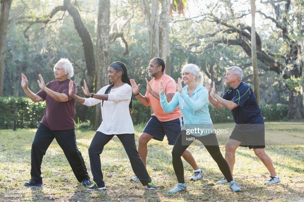 Multi-ethnischen Gruppe von Senioren Tai Chi-Kurs teilnehmen : Stock-Foto
