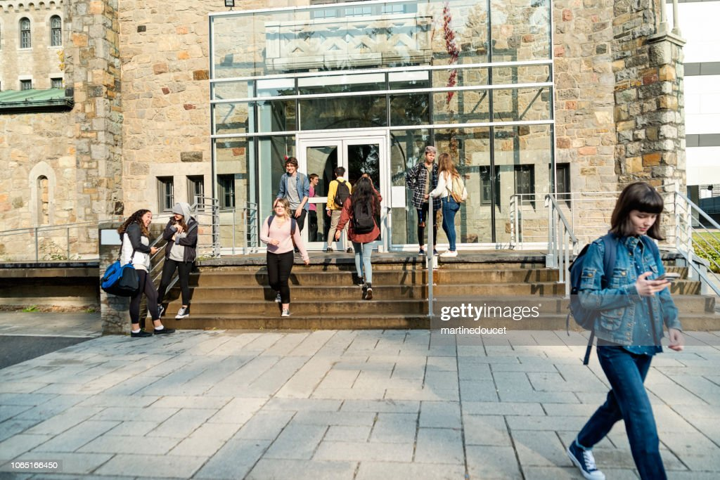 Multi-ethnic group of students in front of College University entrance. : Stock Photo