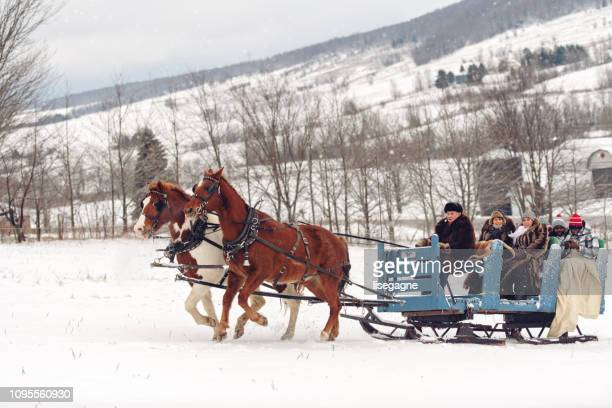 multi-ethnic group sleigh riding - sleigh stock photos and pictures