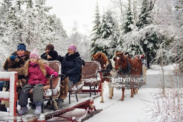 Multi-ethnic group sleigh riding