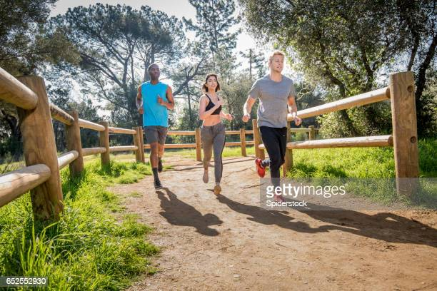 Multi-Ethnic Joggers Running on Trail