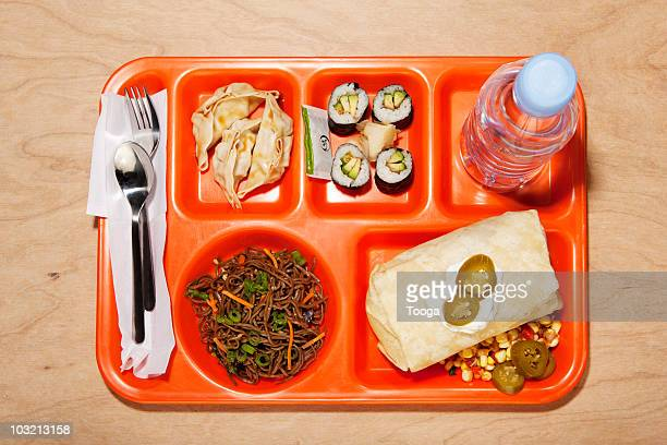 Multi-ethnic lunch tray filled with world foods
