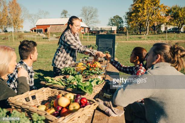multi-ethnic male and female farmers selling organic vegetables at market - farm to table stock photos and pictures