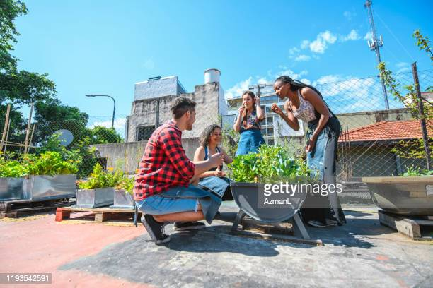 multi-ethnic urban agriculturalists learning about plants - self sufficiency stock pictures, royalty-free photos & images