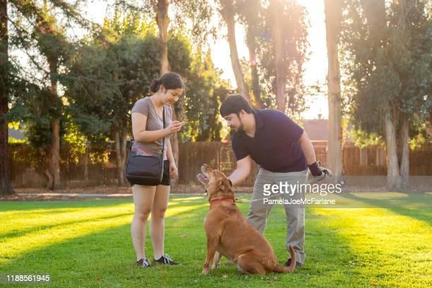 お菓子で公園で多民族女性と男性の訓練犬 - 動物調教師 ストックフォトと画像