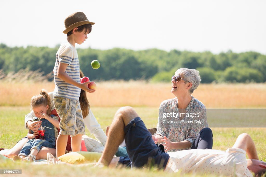 Multi-generation family in sunny field : Stock Photo