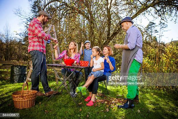 multi-generation family peeling apples, munich, bavaria, germany - gruppo medio di persone foto e immagini stock