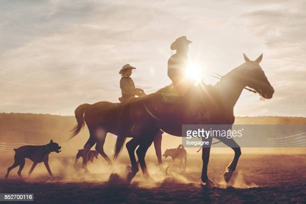 multi-generation family riders - livestock stock pictures, royalty-free photos & images