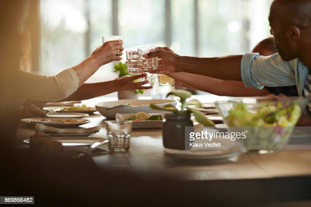 Multigenerational family having weekend lunch and toasting