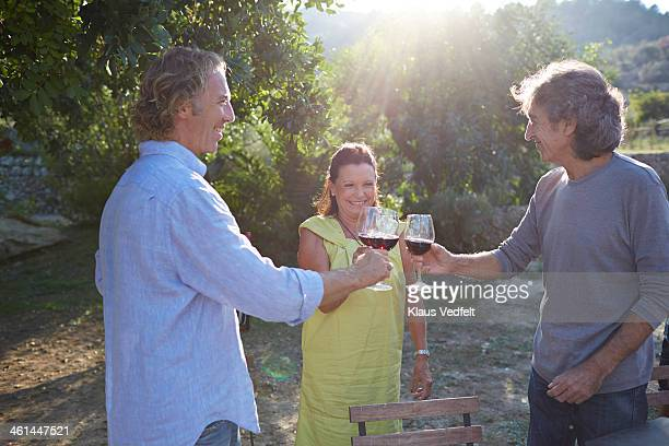 multigenerational family toasting together outside - klaus vedfelt mallorca stock pictures, royalty-free photos & images