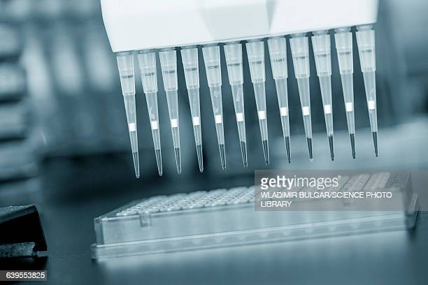 multipipette in a laboratory - pipette stock pictures, royalty-free photos & images