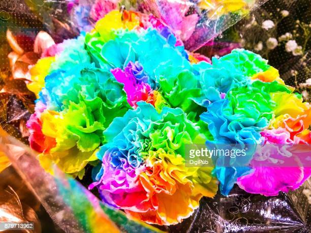Multiple colored carnations