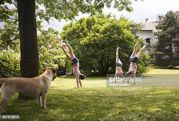 Multiple composite of young woman doing handstands in garden