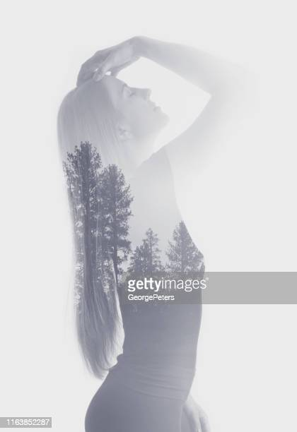 multiple exposure of a young woman morphing into pine trees - self improvement stock pictures, royalty-free photos & images