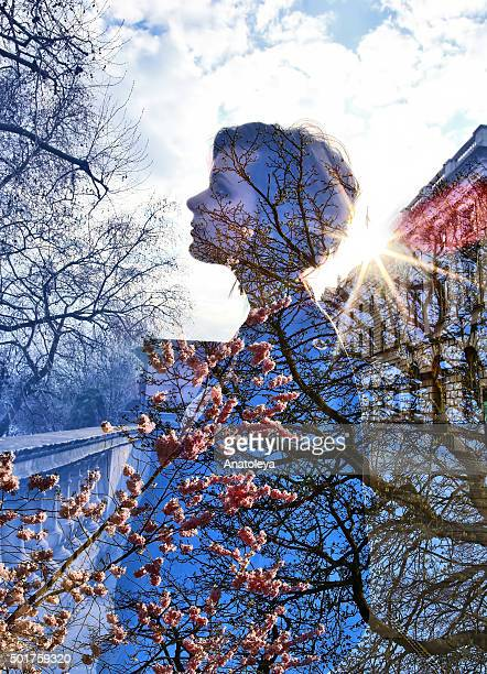 multiple exposure of girl, blossom and sunlight - anatoleya stock pictures, royalty-free photos & images