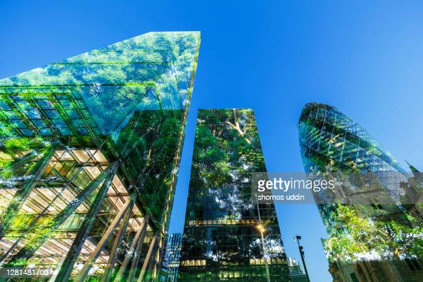 multiple exposure of trees and skyscrapers - capital cities stock pictures, royalty-free photos & images
