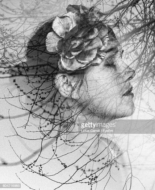 multiple exposure of young woman and bare trees - poeta fotografías e imágenes de stock