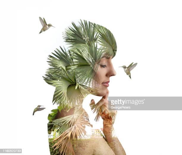 multiple exposure of young woman and hummingbirds - beija flor imagens e fotografias de stock