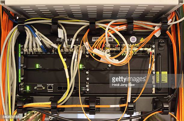 Multiple network internet cables plugged in on a server in a computer server room