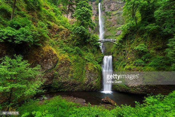 multnomah falls and arch bridge in spring, oregon - columbia river gorge stock pictures, royalty-free photos & images