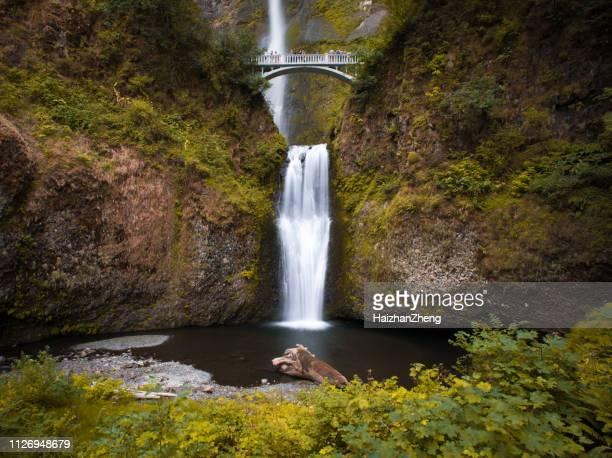 multnomah falls by benson bridge at columbia river gorge oregon in spring season - multnomah falls stock pictures, royalty-free photos & images