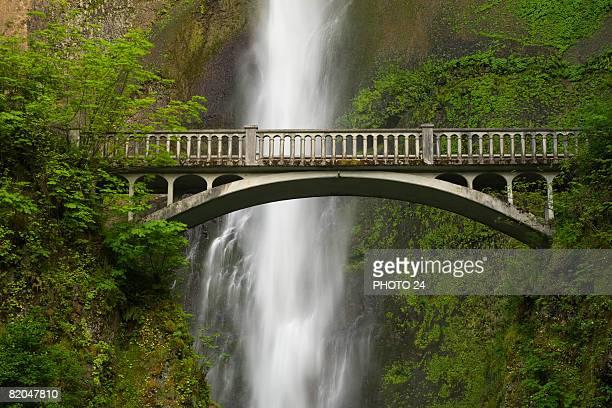 multnomah falls, columbia river gorge, oregon - multnomah falls stock pictures, royalty-free photos & images
