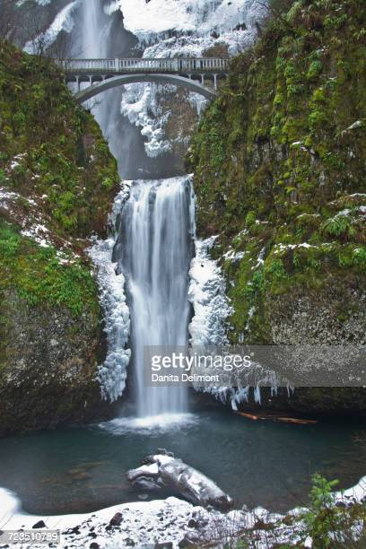 multnomah falls during winter, columbia gorge, oregon, usa - multnomah falls stock pictures, royalty-free photos & images