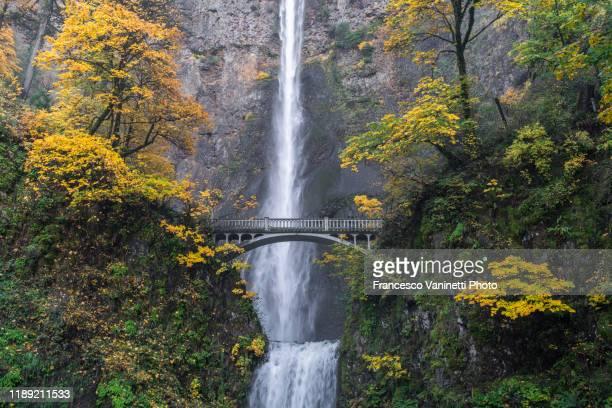 multnomah falls in autumn. cascade locks, multnomah county, oregon, us. - multnomah falls stock pictures, royalty-free photos & images