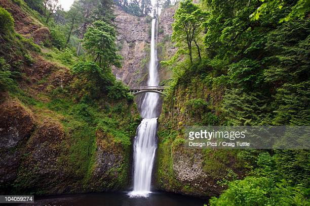 multnomah falls in columbia river gorge national scenic area - multnomah falls stock pictures, royalty-free photos & images