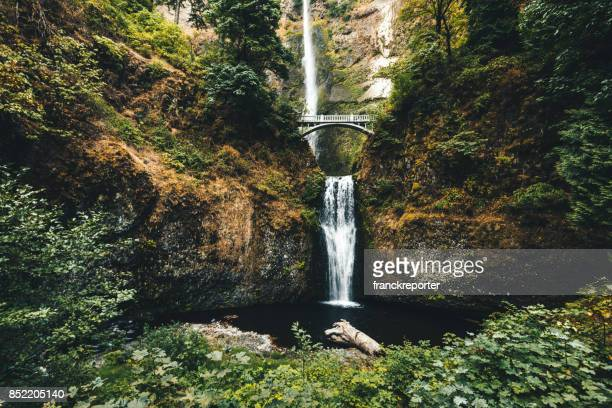 multnomah falls in oregon - columbia river gorge stock pictures, royalty-free photos & images