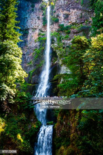 multnomah falls oregon - hank vermote stock pictures, royalty-free photos & images